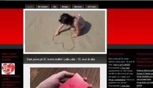 skärmdump av hjärtats blogg