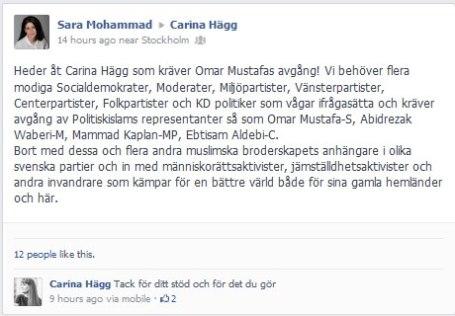 Carina Hägg gillar på facebook en kränkande antisemitisk tankefigur.